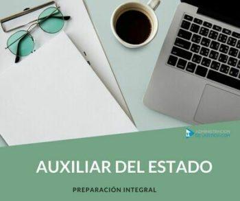 AUXILIAR DEL ESTADO