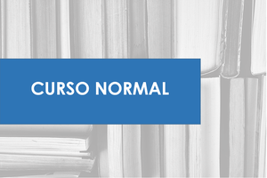 CURSO NORMAL: DURACIÓN 6 MESES