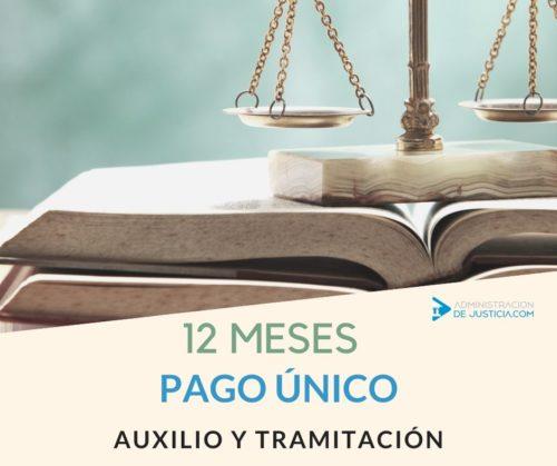 CURSO AUXILIO Y TRAMITACIÓN 12 MESES COMPLETO